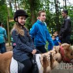 Wandelbos festival-9787