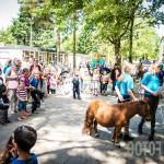 Wandelbos festival-9989